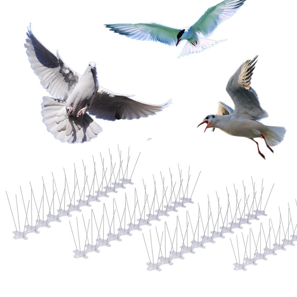 US $36 4 30% OFF STAINLESS STEEL BIRD SPIKES Durable Pigeon Repellent Great  Deterrent for Birds, Crows And Woodpeckers ,Set of 10(10*48 5cm)-in