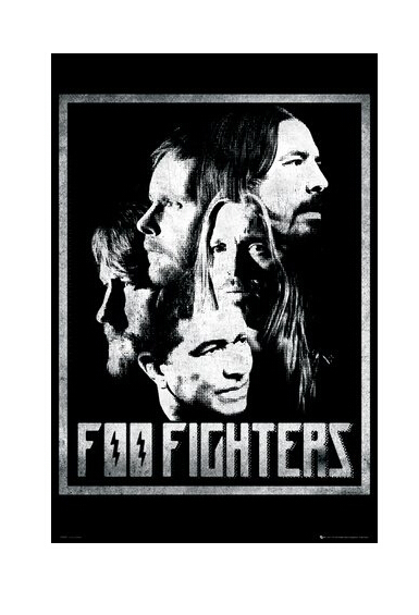 Foo Fighters Poster Custom Canvas Poster Art Home Decoration Cloth Fabric Wall Poster Print Silk Fabric image