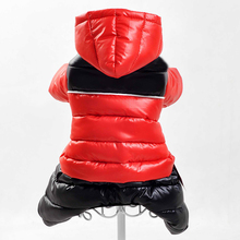 Clothes For Dogs Pet Dog Clothes Small Dog Clothes Winter Coat  Spring For Small  Pet Dog Product XS–XXL
