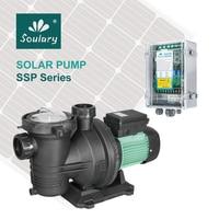 (DHL Free Shipping) 1.5 HP Solar Pump for Swimming Pool   DC Solar Pool Pump (31m3/h 19m   Model : SJP31/19 D72/1000)