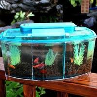 Mini Aquarium Fish Tank Aquarium Display Screen and Clock Fish Tank Aquarium Office Desk Transparent Fish Tank