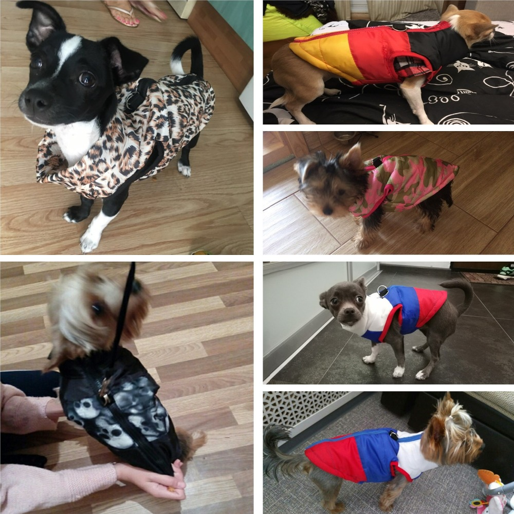 Waterproof and Warm Dog Jacket and Winter Dog Clothing with Strong Zipper Design 3