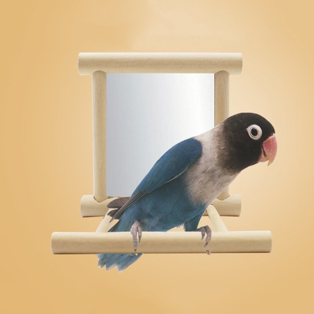 Funny Wooden Bird Toy Mirror Fun Toys For Parrots Cockatiel Vogel Speelgoed Small Birds Parrot Toys Pet Toy Accessories