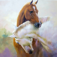 5 D Diamond Drawing Horse A Small Animal Stick Drill Bedroom Whole Cross Stitch Paintings Decor