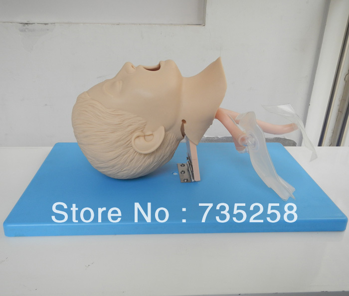 ISO Advanced Child Tracheal Intubation Model,Children Intubation Training Model iso economic newborn baby intubation training model intubation trainer