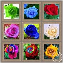 Sale!Flower pots planters ,20 Kinds,50 PCS/Lot, Rainbow rose seeds Beautiful rose seed Bonsai plants Seeds,#8TVKAR