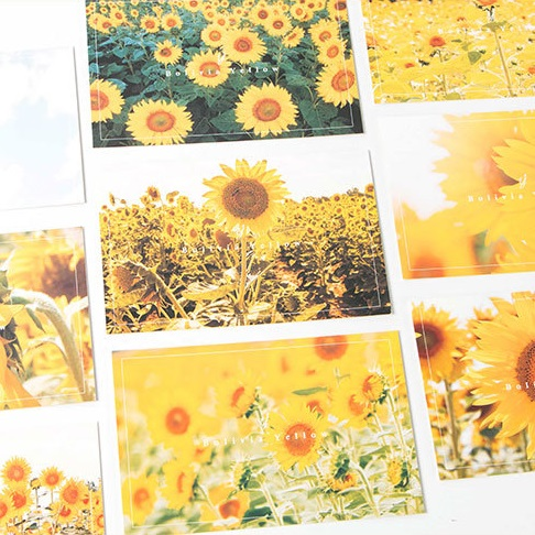 30pcs yellow From Bolivia style card multi-use as Scrapbooking party invitation DIY Decoration gift card message card postcard