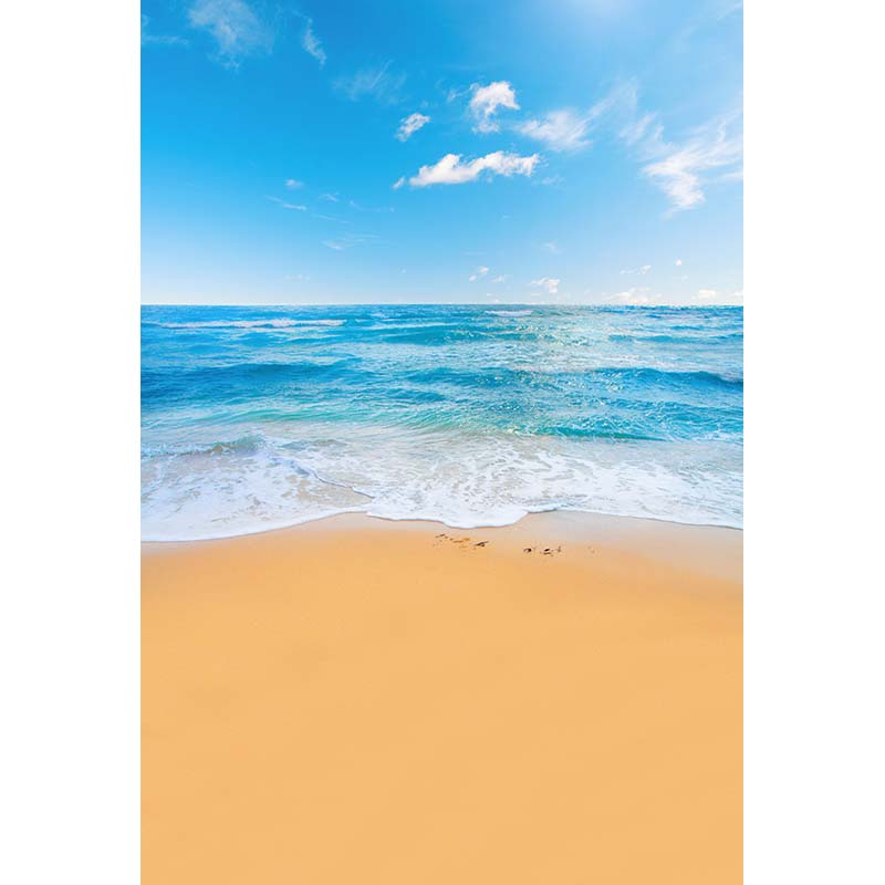 Customize vinyl cloth print 3 D sea beach scenic photo studio backgrounds for portrait photography backdrops props CM-5185