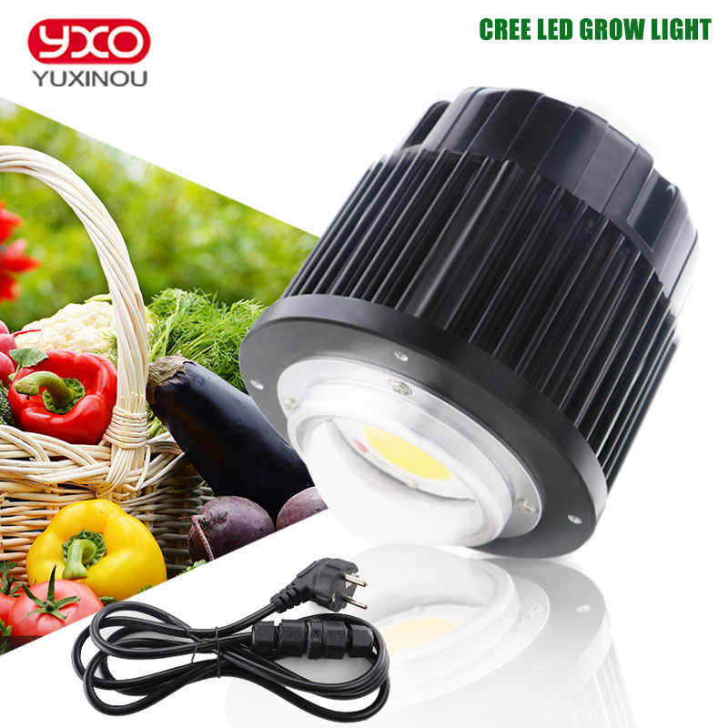 CREE CXB3590 100W COB CITIZEN LED Luz de cultivo de espectro completo 12000LM = HPS 200W lámpara de crecimiento para planta hidropónica
