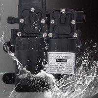 Dual Pump Car Washing Device 12v Pump Household 220v High Pressure Car Washing Machine Brushing Car Water Gun Washing Artifact