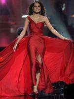 2015 Miss Universe Celebrity Dresses Sheath One Shoulder Floor Length Beade Slit Chiffon Red Carpet Dresses
