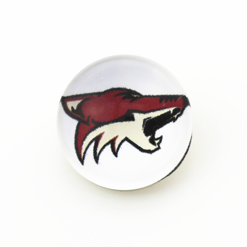 Hot selling 18mm/20mm glass snap button NHL Phoenix Coyotes ice hockey sports team charms fit snap DIY jewelry 10pcs/lot