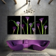 3pcs Pastoral Home Decoration Art HD Print Flower Oil Painting Canvas,Living Room Bedroom Etc. Wall Paintings Calla Pictures
