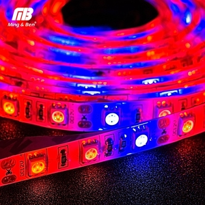 Image 5 - LED Grow Strip S5050 3/4/5 Red 1 Blue 5M Full Spectrum IP65 Phyto Light for Greenhouse Hydroponic Plant Growing DC 12V Fitolamp