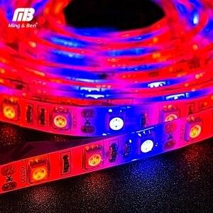 Image 5 - Lampe à spectre complet, S5050 3/LED, 12V DC, 1 bleu, 5M, éclairage à spectre complet, pour serre pour culture hydroponique de plantes, 4/5