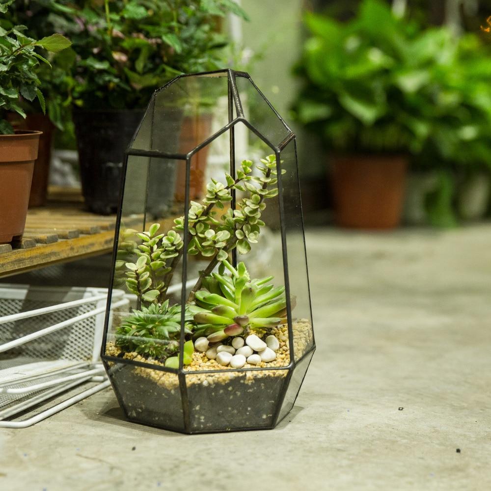 Нерегулярни сочни геометрични стъклени терариуми Wardian случай Miero Пейзаж фея градина миниатюри Vintage Викторианска саксия