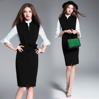 2017 New Spring Big Size Women Dresses Vintage Fashion Business Attire Dress Elegant Casual Two Pieces