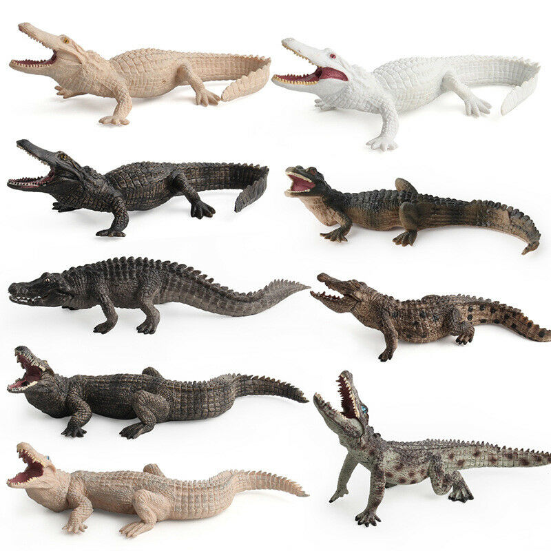 1 PCS Wild Animal Crocodiles Figurine Action Figure Model Adult Kids Collection Science Education Toys Gift Home Decor