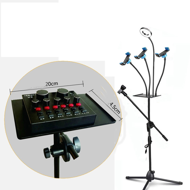 Ring Light and Floor Stand Mic Holder 2