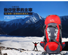 Professional Outdoor Climbing backpack Shoulders Hiking waterproof Unisex travel Camping Mountaineering Bag 50L Hot Sale