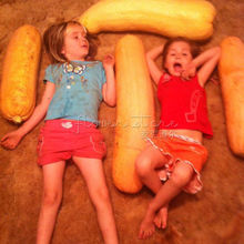 20 Jumbo Pink Banana Squash pumpkin Seeds~vegetable Garden Plant