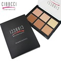 Professional contour cream kit 6 Color Makeup Party Contour Palette Face Cream Makeup Palette