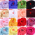 Moda 75*200 Longa Barato Bolero Jacket Casamento Wraps Xale Chiffon mulheres Cap Envoltório Encolher de Ombros Para Vestidos de Noite do baile de Finalistas 2016 Em estoque