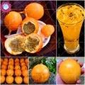 10 шт./пакет оранжевый желтый Колумбии маракуйи, Гранада, Passiflora Ligularis, многолетние сладкий гранадилла для сада - фото