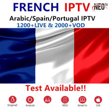 Neotv pro francuski IPTV arabski IPTV portugalia IPTV M3U subskrypcji wsparcie Android M3U Enigma2 MAG IOS Smart tv PC inteligentny TV Box(China)
