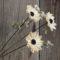 One Piece Sun Flower Natural Plant Handmade Combination Art Dried Flower Home Decoration Flower Arrangement Material