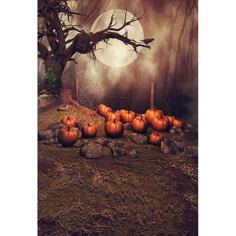 Custom Photography Backdrops Props Halloween day Wooden Floor Moon Pumpkin theme Photo Studio Background HA-256 allenjoy background for photo studio full moon spider black cat pumpkin halloween backdrop newborn original design fantasy props