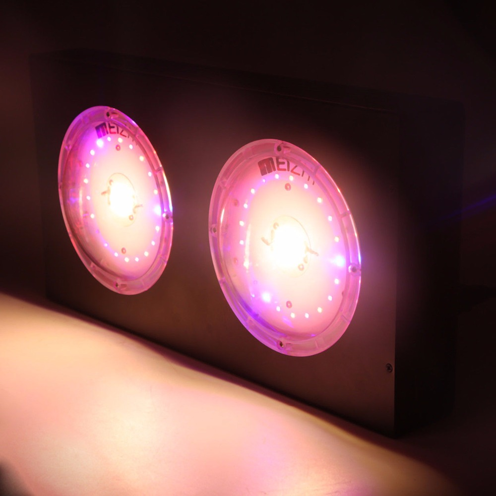 Meizhi 600w Led Grow Light Review Shelly Lighting