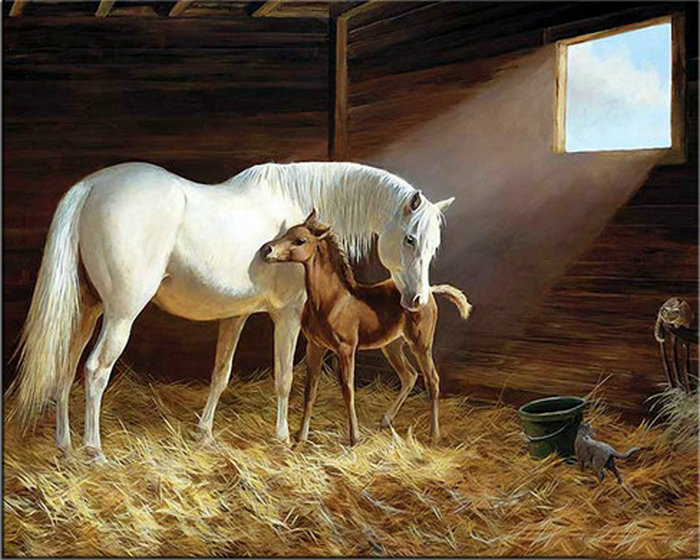 5D diy diamond painting cross stitch animal horse canvas wall sticker full round drill diamond embroidery crafts gift home decor