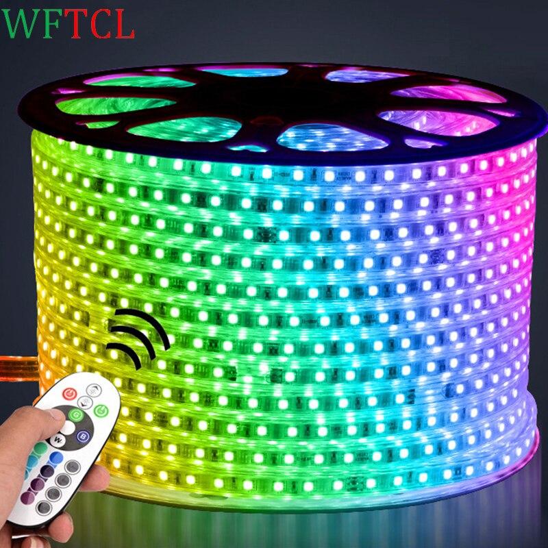 WFTCL LED Strip Lights IP67 waterproof led leiste AC110/220V 60LEDs/M Tiras LED 5050 RGB led tape light for Christmas decoration