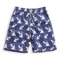 Summer New Quick Dry Loose Swimwear Men Shorts Sailboat Printed Mens Beach Shorts