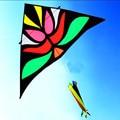 O envio gratuito de alta qualidade 2.8 m linha de nylon ripstop tecido pipa delta fox flor pássaro pipa pipas gigantes acessórios de diamante kites
