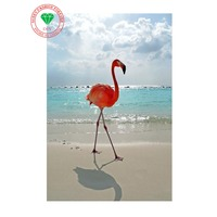 5d Diy Diamond Painting Animal Flamingo Embroidery Full Drill Cross Stitch Crystal Square Diamond Sets Unfinish