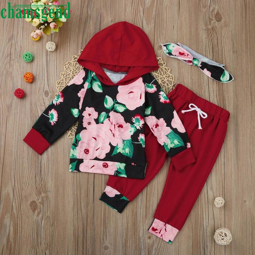 2018 cute Red Toddler Infant Baby Girl Boy Clothes Set Floral Full Hooded sweater Tops+Pants Outfits P30 baby clothes