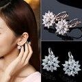 2016 Women's Luxury Zircon Stone Flower Pattern Ear  Jewelry Gift  75ED NY79 7G7Y 8A7N