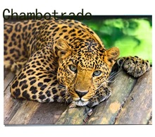 Home Decorative Wall Artwork Modular Pictures DIY By Numbers Abstract Unique Gift Animal Leopard On Canvas Kits Drawing