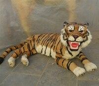 大130 × 60センチsimuluationなりやすい虎モデル
