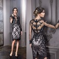 Black Lace Short Cocktail Dresses Knee Length See Through Back Full Sleeve Formal Women's Party Gowns Vestido de Festa