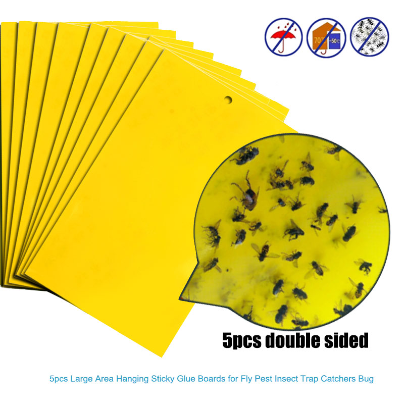 5Pcs Strong Flies Traps Bugs Sticky Board Catching Aphid Insects Killer Pest Control Whitefly Thrip Leafminer Glue Stickers
