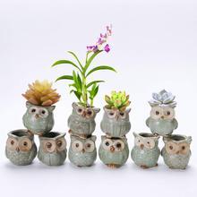 5Pcs/Set Ceramic Owl-shaped Flower Pot For Home Office Decoration