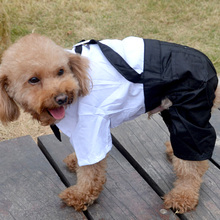 A Suit of Clothes Fashion Handsome Dog Pet Dog Cloth Suit Pants Casual Dog Four-legged pants trousers Costumes For Dogs