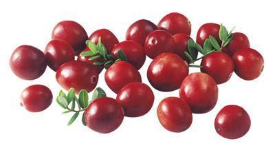 10ml liquid food Essence oil liquid flavor food grade liquid Cranberry essence oil Cranberry flavor oil