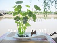 Artificial Eucalyptus Flower Evergreen Plant + Ceramic Vase Pot set in Wedding Home Table Decor Fake Foliage Green F321