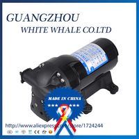 9.19Better Quality DP 70 70Psi 150w 12v DC mini pump for water
