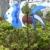 Colorido 3D Molino de viento de Juguete De Los Niños de Viento Spinner Con Anillo de Pescado de Mar Jardín Patio Decoración