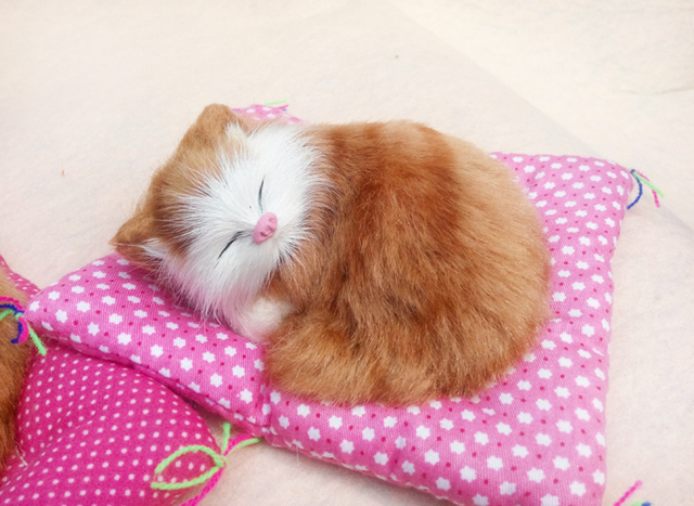 jouet chat miaou